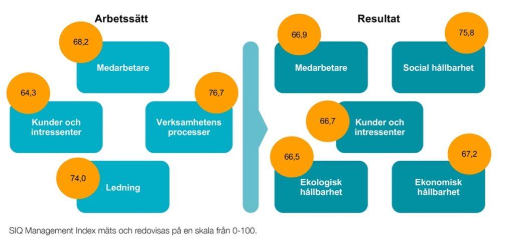 SIQ Management Index resultat